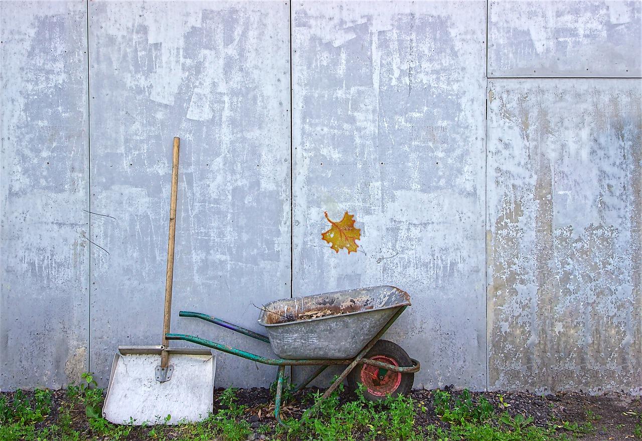 habiller un mur extérieur dans son jardin